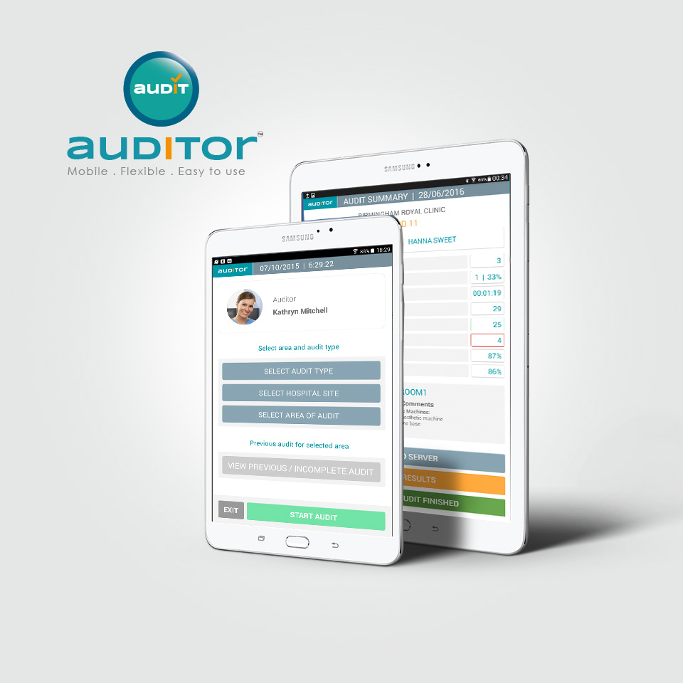 auditor1